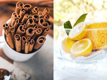 چگونگی از بین بردن بوی غذا در خانه