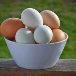تشخیص تخم مرغ فاسد و سالم